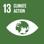 UN-SDG-13
