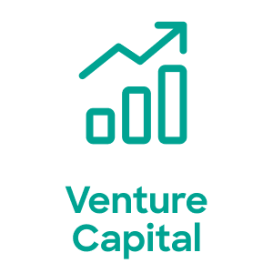 Venture Captial